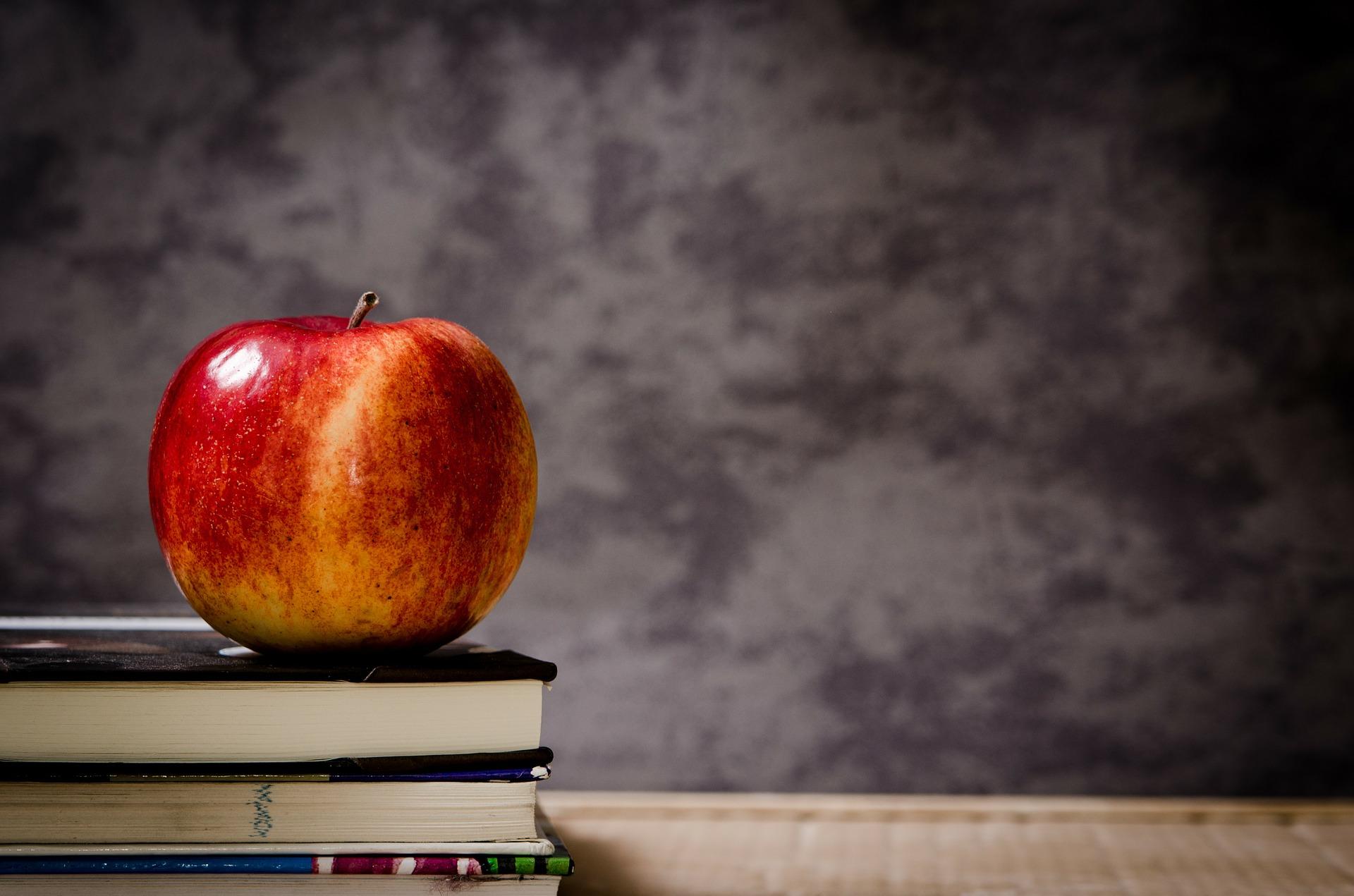 Fachkräftemangel in Kitas – Folgen für Eltern und Betreuer