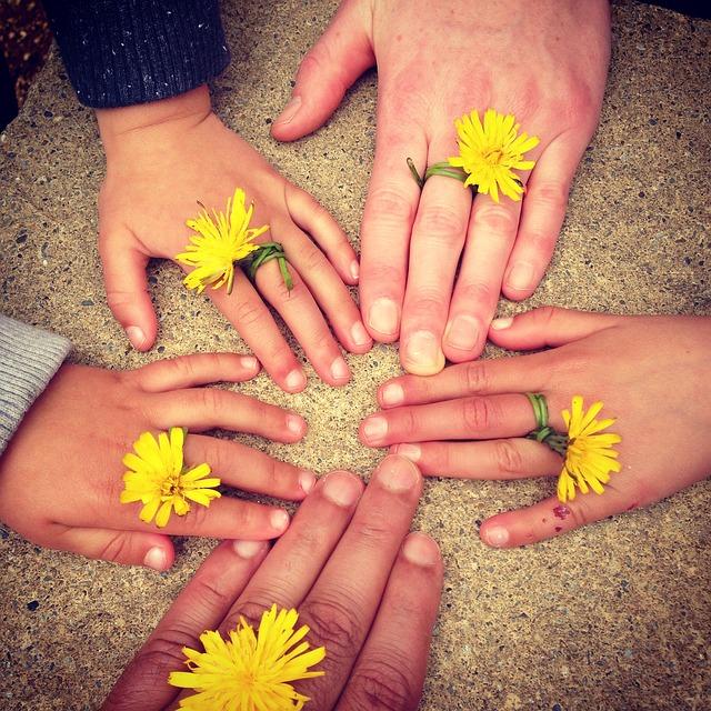 Hände mit Ringen aus Löwenzahn